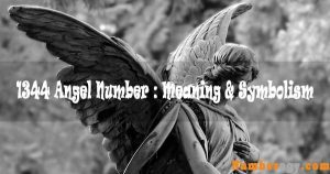 1344 Angel Number : Meaning & Symbolism