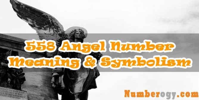 558 Angel Number : Meaning & Symbolism