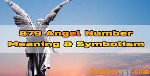 879 Angel Number : Meaning & Symbolism